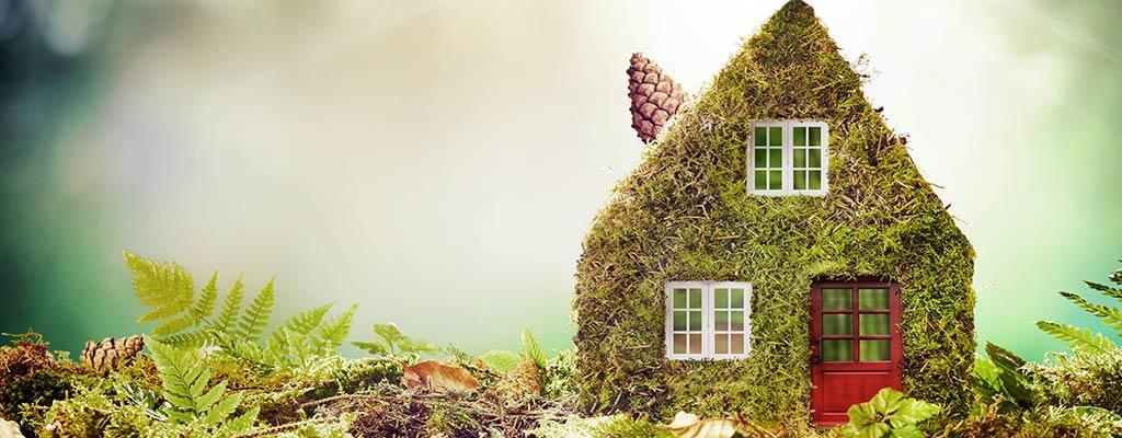 Haus aus Moos, symbolisch für Müllrecycling